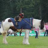 Paard & Erfgoed 2 sept. 2012 (13 van 139)