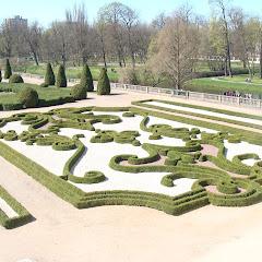 Borsukowina wiosna 2009 - DSC04644.JPG