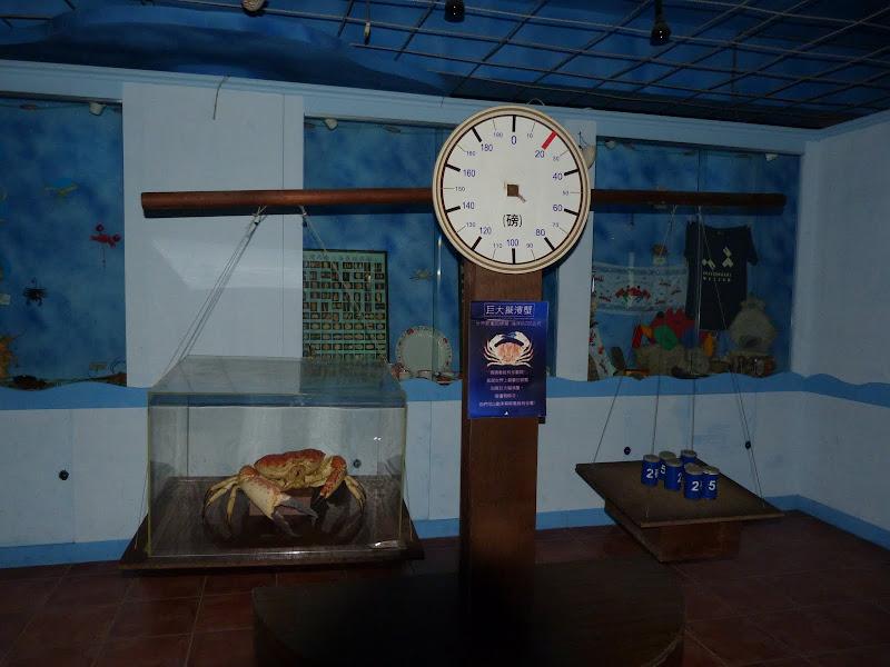TAIWAN.Toucheng .musée du crabe situé au Pei Kan Resort, surfers,maison Japonaise du chef de gare - P1080714.JPG