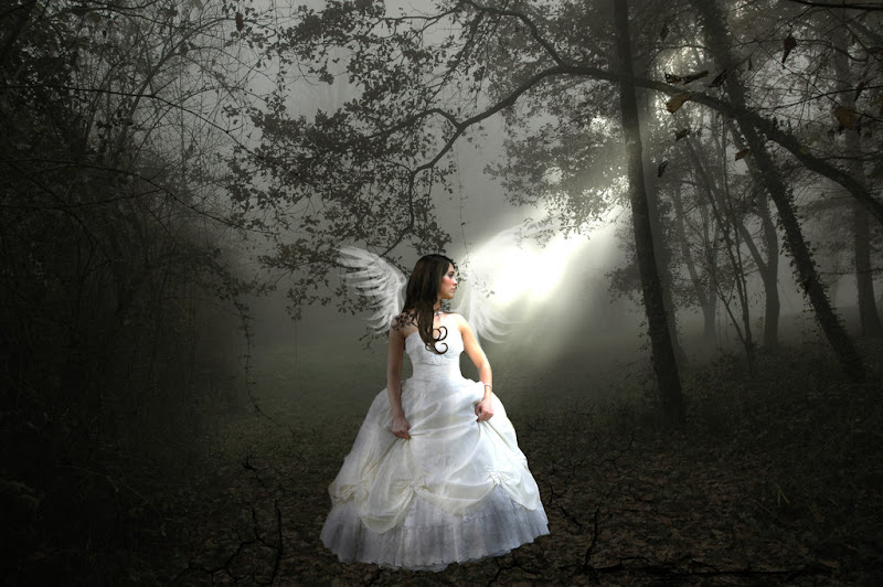 Girl Angel In The Dress Of Bride, Angels