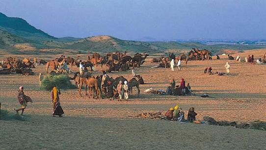 Pushkar, Rajasthan, India: Hindu pilgrims