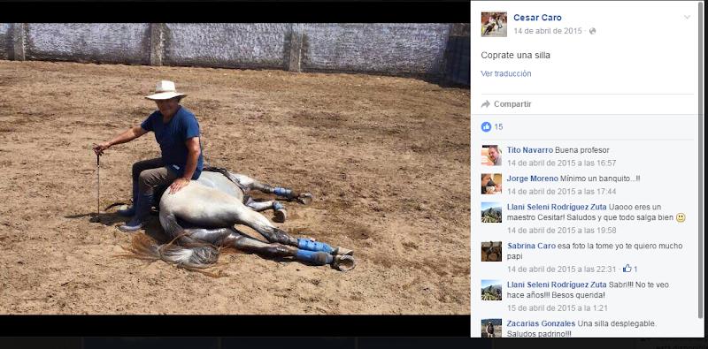 César Caro humillando a un caballo como si fuera una silla. ¡Qué valiente!