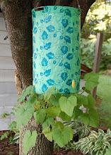 Photo: Day 83 ... My topsy turvy zucchini plant