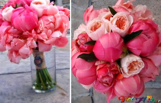 gióng bó hoa cưới nhỉ