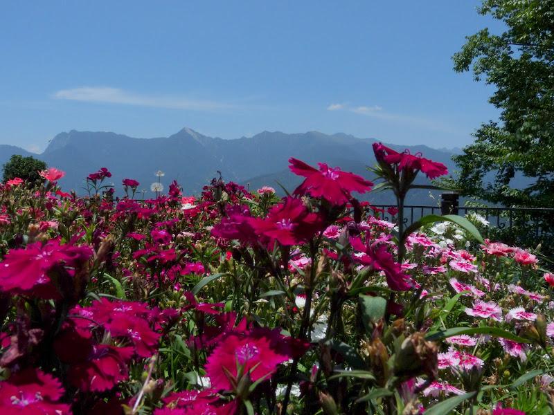 TAIWAN. Sun moon lake,Puli (région de Nantou) et retour à Taipei via Ylan - P1110217.JPG