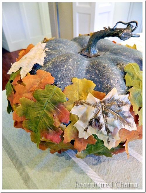 leafy pumpkin 9