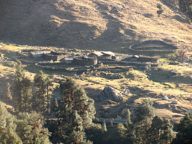 tents set up on the hillside above the road