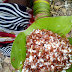 Jaggery to increase immunity in the diet of tribals