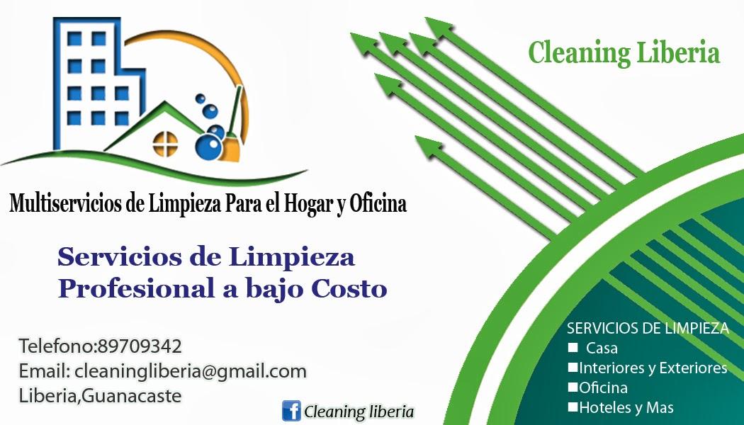cleaning liberia google