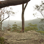 Gap Creek Viewpoint off Monkey Face road in the Watagans (322808)