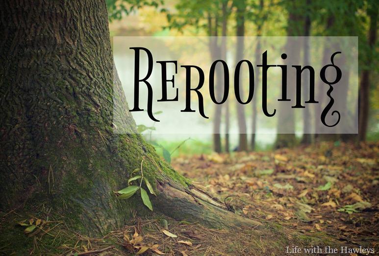 Rerooting-2