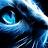 Jonathan Oberländer avatar image