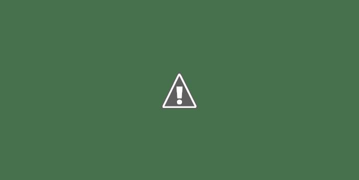 barrio Los Naranjos Unidos y Organizados Necochea