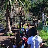 Campamento de Navidad 2013