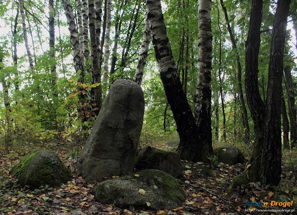 Piaszno Kręgi Kamienne i Kurhany