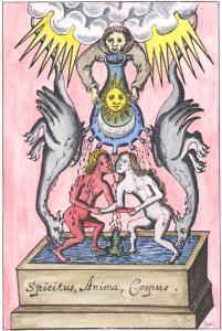 Figure From Elias Ashmole Theatrum Chemicum Britannicum London 1652, Alchemical And Hermetic Emblems 1