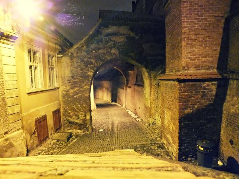 pasajul scarilor sibiu noaptea