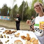 2013.05.12 SEB 31. Tartu Jooksumaraton - AS20130512KTM_568S.jpg