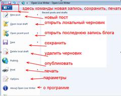 опции olw open live writer