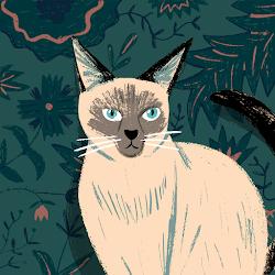 Sayaka Suzuki