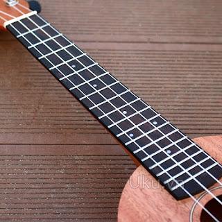 ukulele andrew hình bầu dục quả dưa hấu