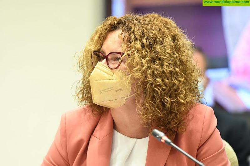 """Nieves Hernández: """"La única verdad es que el Cabildo es quien financia el Centro de Día de El Paso"""""""