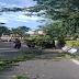 Prosedur Pemangkasan Pohon dan Permintaan Tanaman Hias/Pohon Pelindung