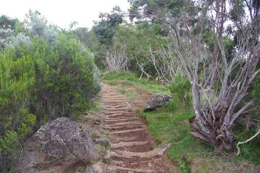 Les marches caractéristiques des sentiers de la Réunion.