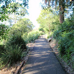 footpath leading through Cremorne Reserve (258707)