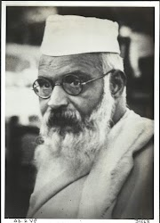 વિવિઠ્ઠલભાઈ પટેલ - Vithalbhai Patel