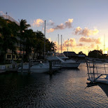 the harbor by dusk in Key Largo, Florida, United States