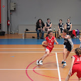 basket 211.jpg