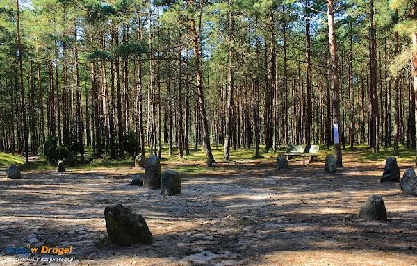 Kamienne Kręgi Gotów w Węsiorach