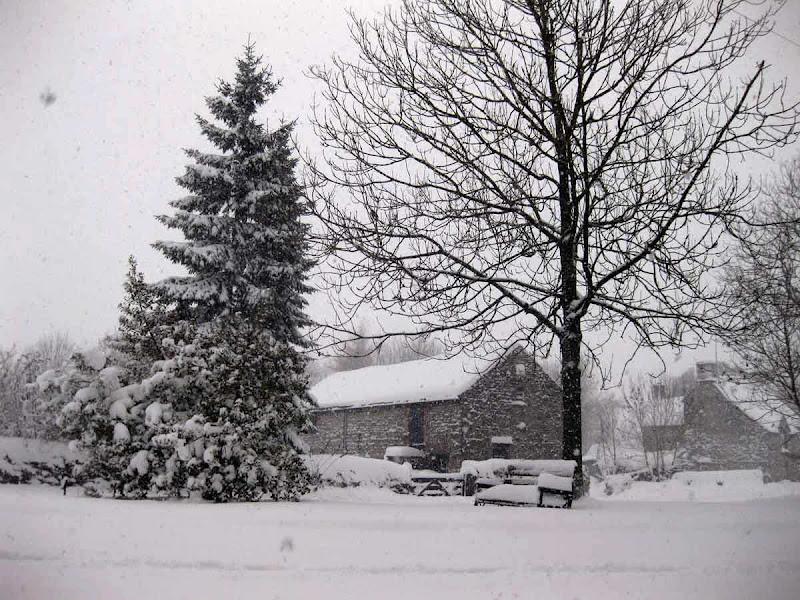 SnowCR1