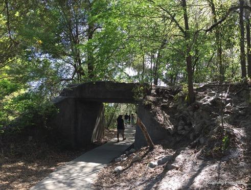 Through the tunnel - La Chua Trail