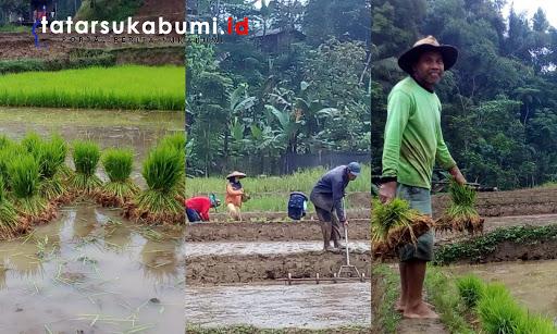 Tradisi Liliuran Masyarakat Sukabumi, Mulai Tergerus Zaman