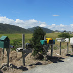 Greymouth - Radtour zum Point Elisabeth Walkway