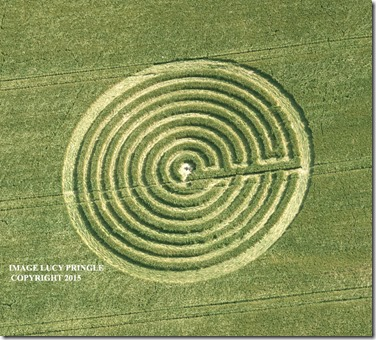 Redlynch--Somerset13- crop circle