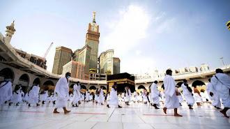 Arab Saudi Akan Terima 20.000 Lebih Jemaah Umrah Domestik dan Luar Negeri