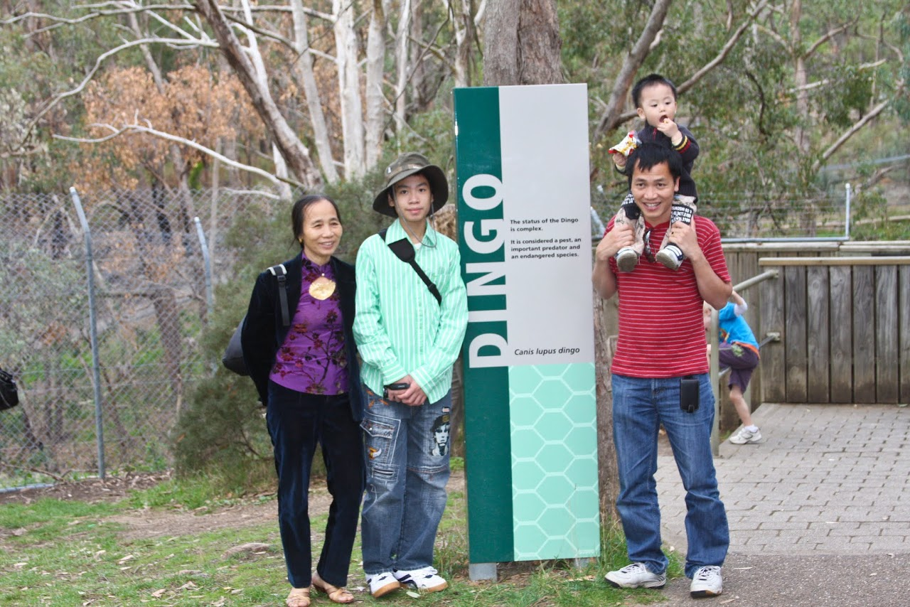 2010 04 18 Mt Lofty and Cleland Conservation Park - IMG_0708.jpg