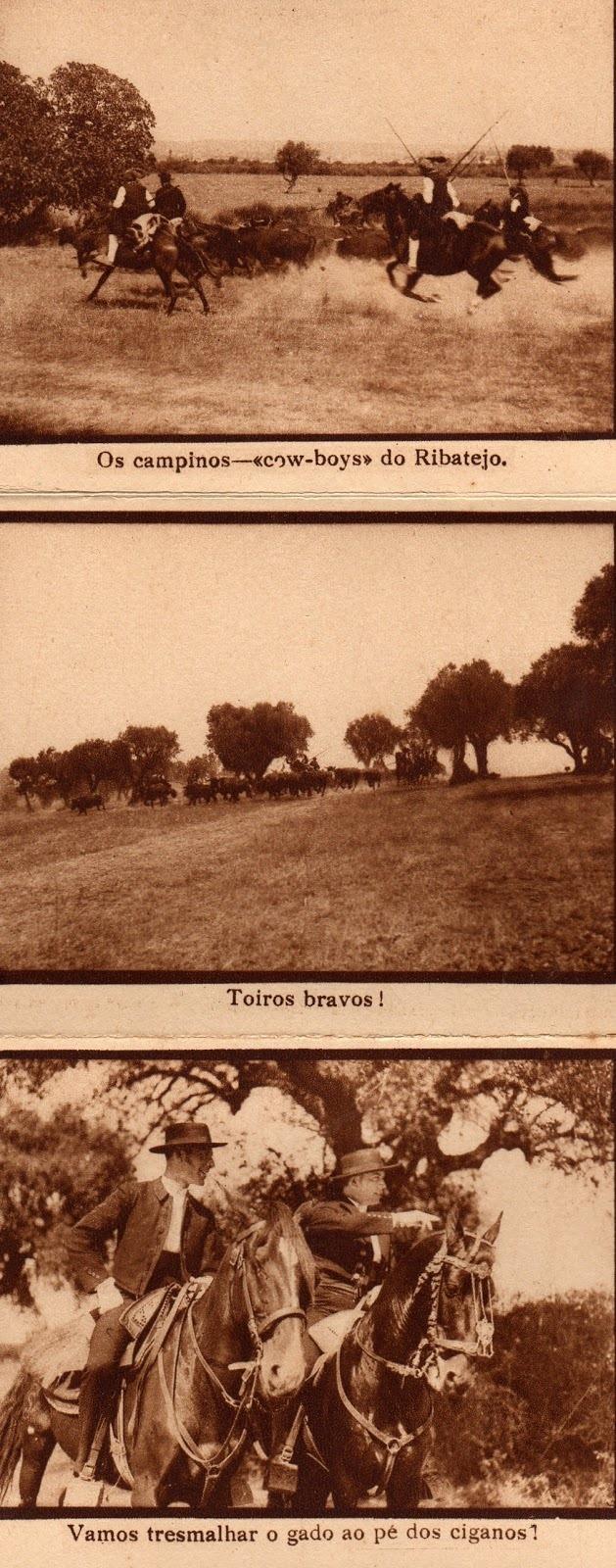 [1931-A-Severa.611]