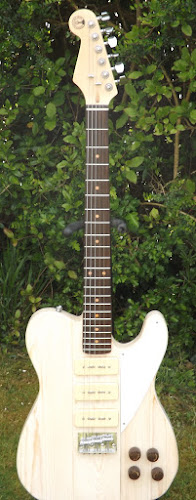 ButserMountainmusic Telebird 3 pickup electric guitar