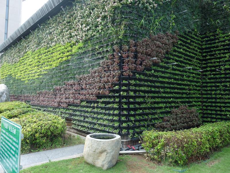 Technologie française, de Patrick Blanc. murs végétalisés, un peu comme au musée des arts premiers à Paris. Mais ici il utilise des pots et non pas un support textile sur lequel se fixent les racines.