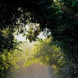kwazulu natal - KZN424.jpg