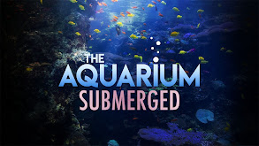 The Aquarium: Submerged thumbnail