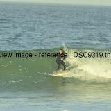 _DSC9319.thumb.jpg