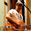 MIck McCarthy's profile photo