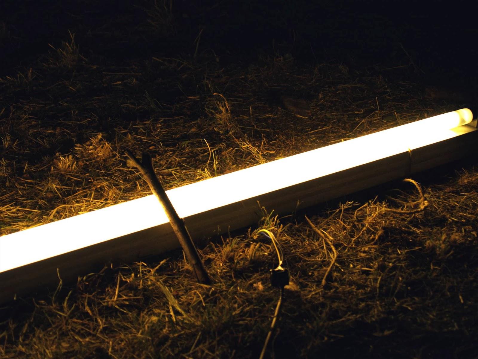 Področni mnogoboj, Sežana 2007 - P0197073.JPG