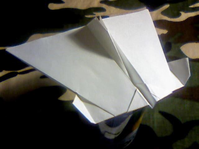 Wing 42