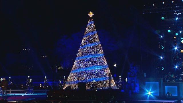 [christmas+tree+2017%5B3%5D]